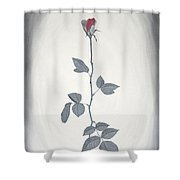 Rose Shower Curtain by Sven Fischer