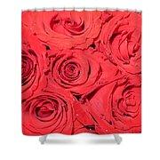 Rose swirls Shower Curtain by Sonali Gangane