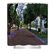 Rothschild Boulevard Shower Curtain by Ron Shoshani