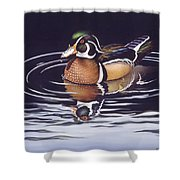 Royal Reflections Shower Curtain by Richard De Wolfe