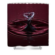 Rubies And Diamonds Shower Curtain by Susan Candelario