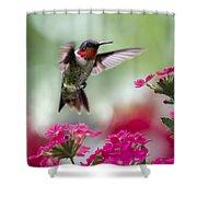 Ruby Garden Jewel Shower Curtain by Christina Rollo