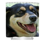 Ruby Shower Curtain by Lisa  Phillips