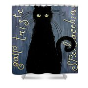Sad and ruffled cat Shower Curtain by Donatella Muggianu