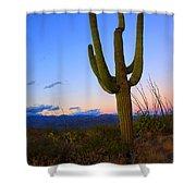 Saguaro Dusk Shower Curtain by Mike  Dawson