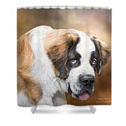 Saint Bernie Shower Curtain by Carol Cavalaris