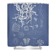 Salwater Algae Shower Curtain by Aged Pixel
