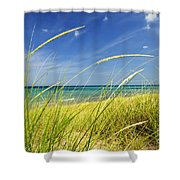 Sand Dunes At Beach Shower Curtain by Elena Elisseeva