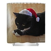 Santa Kitty Shower Curtain by Cheryl Young