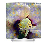 Satin Flower Fractal Kaleidoscope Shower Curtain by Renee Trenholm