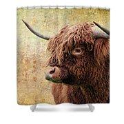 Scottish Highland Steer Shower Curtain by Steve McKinzie