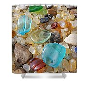 Seaglass Art Prints Agates Petrified Wood Shower Curtain by Baslee Troutman
