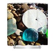Seaglass Art Prints Rock Garden Sand Dollar Shower Curtain by Baslee Troutman