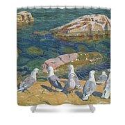 Seagulls Shower Curtain by Arkadij Aleksandrovic Rylov