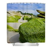 Seascape Shower Curtain by Aged Pixel