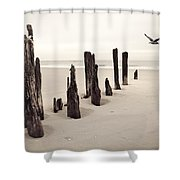 Seaside Shower Curtain by Gary Heller