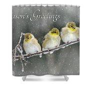Season's Greetings Shower Curtain by Lori Deiter