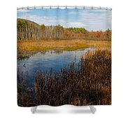 Secluded Adirondack Pond Shower Curtain by David Patterson