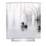 Serene Moments Shower Curtain by Karol Livote