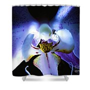 Shadow Dance Shower Curtain by Robyn King