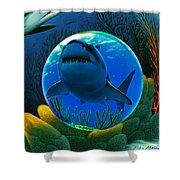 Shark World  Shower Curtain by Robin Moline