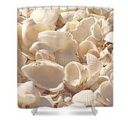 She Sells Seashells Shower Curtain by Kim Hojnacki