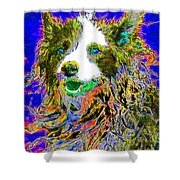Sheep Dog 20130125v3 Shower Curtain by Wingsdomain Art and Photography