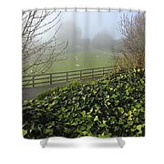 Sheep Shower Curtain by Les Cunliffe