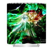 Shining Through The Glass II Shower Curtain by Kitrina Arbuckle
