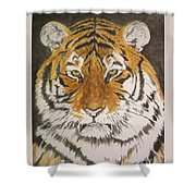 Siberian Tiger Shower Curtain by Regan J Smith