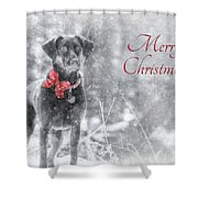 Sienna - Merry Christmas Shower Curtain by Lori Deiter