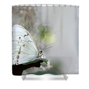 Silent Beauty Shower Curtain by Sabrina L Ryan