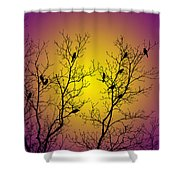 Silhouette Birds Shower Curtain by Christina Rollo