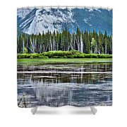 Silver Reflections Shower Curtain by Linda Sannuti