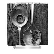 Silver Spoons Black And White Shower Curtain by Edward Fielding