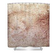 Sketch Of A Roaring Lion Shower Curtain by Leonardo Da Vinci