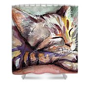Sleeping Kitten Shower Curtain by Olga Shvartsur