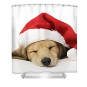Sleeping Santa Puppy Shower Curtain by Greg Cuddiford