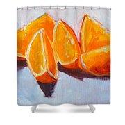 Sliced Shower Curtain by Nancy Merkle