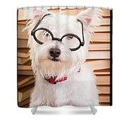 Smart Doggie Shower Curtain by Edward Fielding