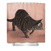 Sneaky Shower Curtain by Anastasiya Malakhova