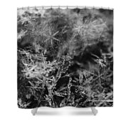 Snow Constellation Shower Curtain by Rona Black