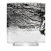 Snow Scene 5 Shower Curtain by Patrick J Murphy