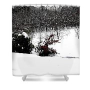 Snow Scene 6 Shower Curtain by Patrick J Murphy