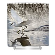 Snowy Egret Gliding Across the Water Shower Curtain by John Bailey