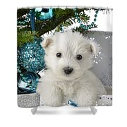 Snowy White Puppy Present Shower Curtain by Greg Cuddiford