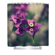 So Real That It Makes Me Wanna Cry Shower Curtain by Laurie Search