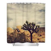 Solitary Man Shower Curtain by Laurie Search