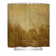 Solitude Shower Curtain by Kim Hojnacki