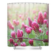 Somewhere Only We Know Shower Curtain by Amy Tyler